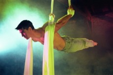 007 230x153 custom - Acrobats and Gymnastic Shows