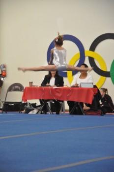 25586 232x350 - Gymnast Shows