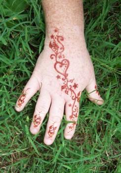 3673790 245x350 - Henna Tattoos