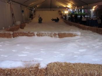 IMG 1420 350x262 - Snow Parties