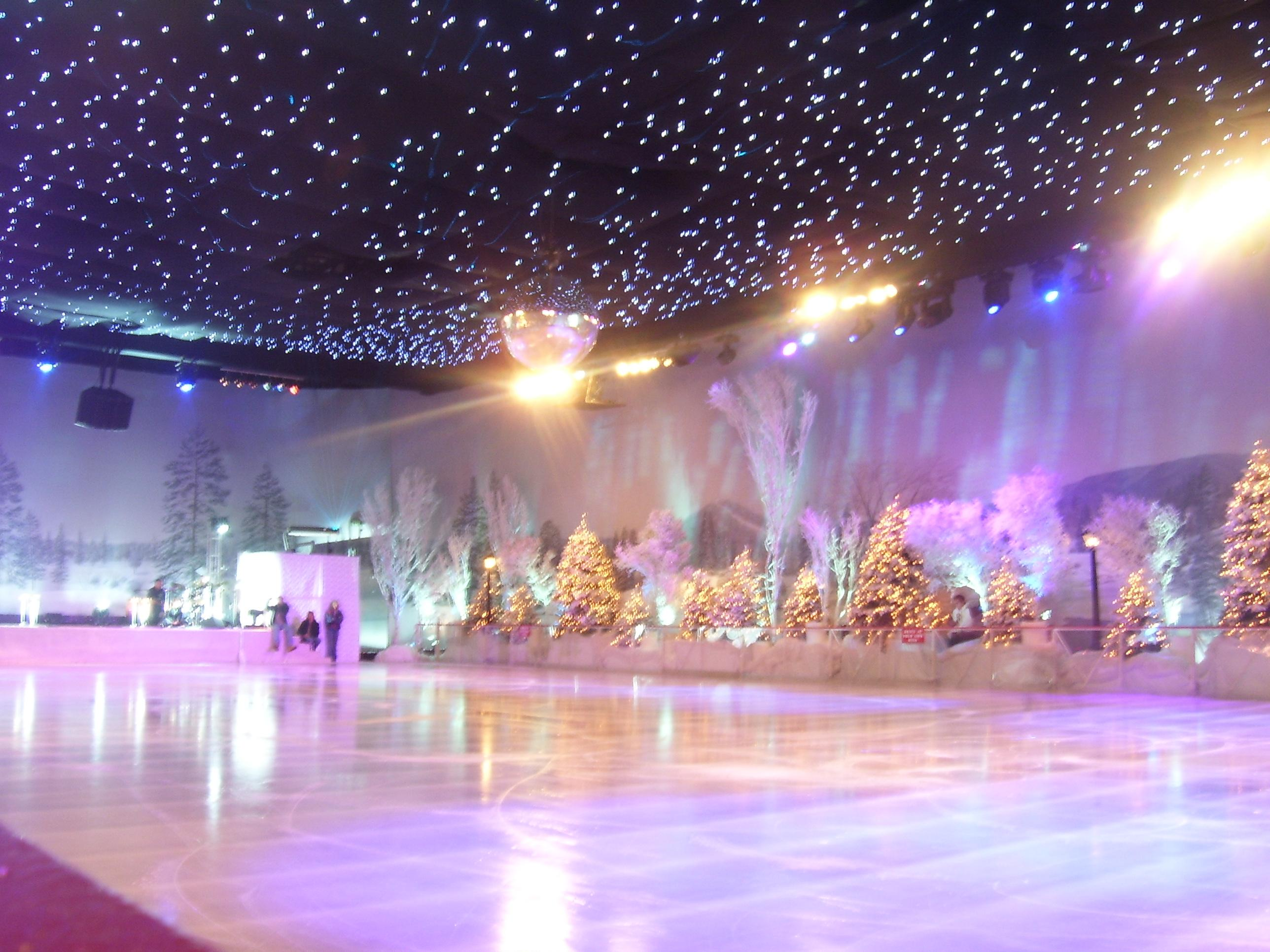 Ice Skating Rink - Ice Shows