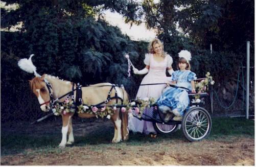 PonyHoudini - Pony Carts