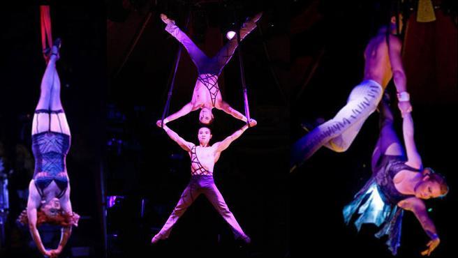 acrobats - Acrobatic Shows