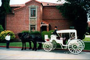 carriage - Carriages, Stagecoaches & Variety of Cart Rides
