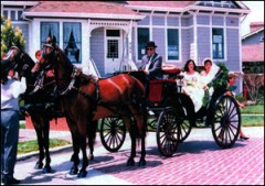 carriages 240x169 custom - Wedding