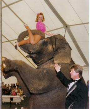ea1 287x350 - Elephant Rides and Acts