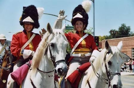 horses wr - Horses