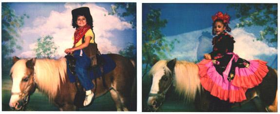 ponies - Photo Ponies